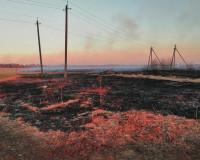 В Смоленской области загорелось кладбище