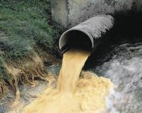 Руднянский МУП уличили в сбросе вредных сточных вод в реку
