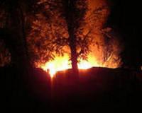 В Смоленской области в огне погибли животные