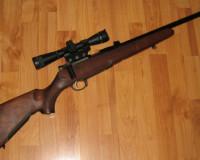 Житель области лишился винтовки