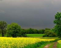 Прогноз погоды на субботу, 25 мая