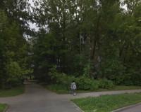 В Смоленске решили сохранить зеленую зону в районе улицы Нормандии-Неман