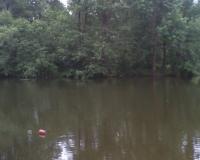 В Смоленской области 13-летний мальчик утонул в озере