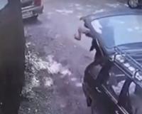 В Смоленске живодёр выкинул котят в пакете (фото, видео)