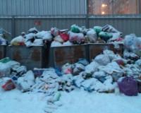 Коммунальщики перестали вывозить мусор