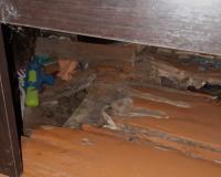 В Смоленске чиновники не могут отремонтировать муниципальное жилье (фото)