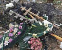 В Смоленске правоохранительные органы поймали осквернительницу могил (фото, видео)