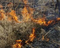 Из-за пала травы в Пржевальском едва не сгорел конный двор