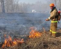 Огнеборцы за сутки 58 раз выезжали на тушение горящей травы