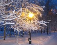 Смоленскую область ждут сильные снегопады