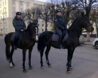Охранять порядок в Смоленске на майских праздниках будет кавалерия