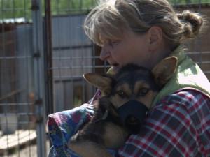 Неизвестные лица угрожают расправой создательнице приюта для животных