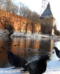 В Смоленске ожидаются морозы до минус 25?