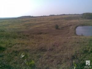 Бесхозную землю на Смоленщине вернули государству