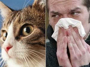 Аллергия на телевизор