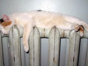 Тепло в Смоленских домах будет 7 октября