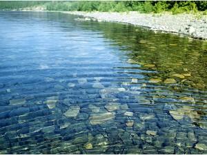 Получение информации о состоянии водных ресурсов в России, с появлением интерактивной карты