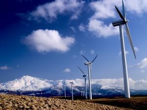 Смолянам предоставлена возможность для изучения в Германии альтернативной энергетики