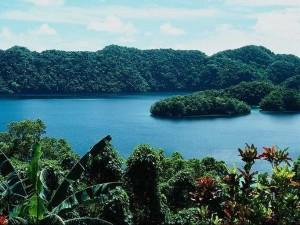 Чудесные туры на Бали