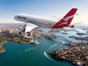 Крупные авиакомпании нарушают права своих пассажиров