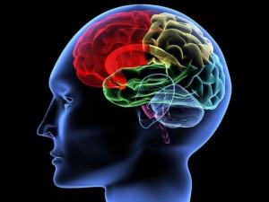 Улучшаем работоспособность мозга