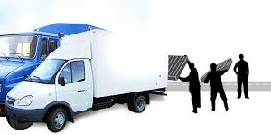 Грузоперевозки. Техника, используемая для перевозки разных грузов