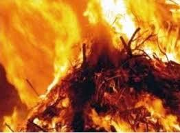 Почти 500 тонн сена сгорели в Смоленской области