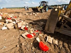 Больше 190 тонн санкционных товаров задержали в Смоленской области