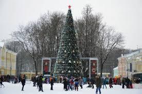 В Смоленске установили главную ёлку региона