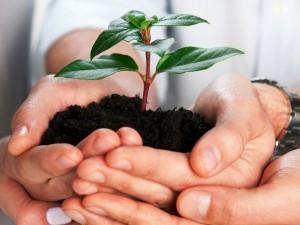 Пути к успеху развития малого бизнеса