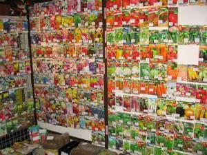 В Смоленской области будут наказаны продавцы контрафактных семян