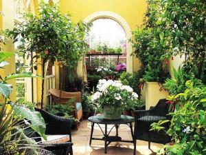 Как использовать растения в интерьере