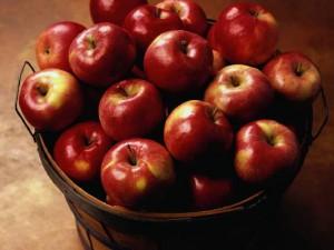 В Смоленскую область под видом лекарств везли польские яблоки