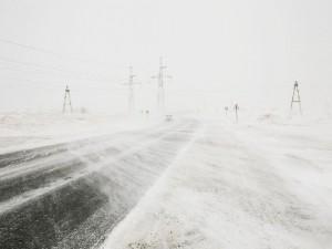В Смоленскую область пришли метель и сильный ветер
