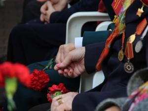 В Смоленскае и области ветеранам обеспечат бесплатный проезд в честь 9 мая