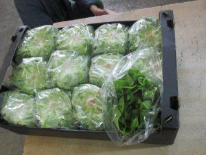 В Смоленскую область пытались ввезти овощи по поддельным документам