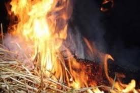 Под Смоленском сгорело несколько тонн сена