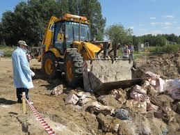 В Смоленскую область пытались ввезти несертифицированные груши