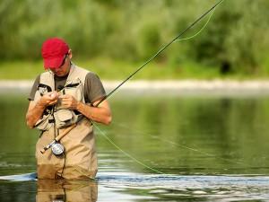 Под Смоленском поймали четырёх браконьеров-рыболовов