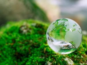 День Земли отметят в Смоленске 22 апреля