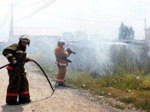 В Смоленской области тушили тлеющий торф