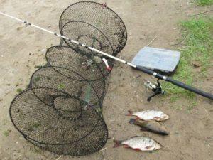 В Смоленской области рыбакам грозит уголовное дело за браконьерство