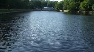 В каких озёрах Смоленска запретил купаться Роспотребнадзор