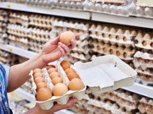Все о яйцах