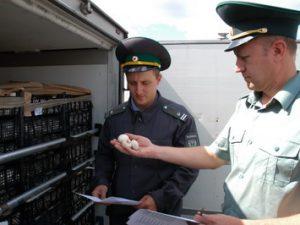 Смоленские таможенники задержали санкционные шампиньоны и виноград