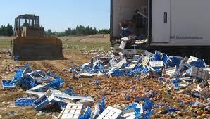 В Смоленской области уничтожили 20 тонн куриного мяса