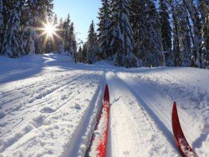 По накатанной лыжне на новых лыжах