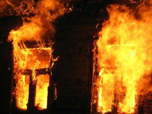 Житель Смоленского района расстрелял людей. Подробности