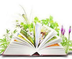 Жителей Смоленска закружит «Библиокарусель»