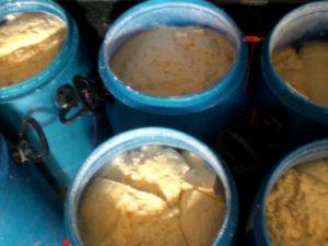 В Смоленской области задержали «опасную» партию сыра